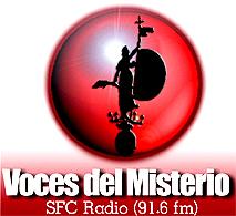 Logo VDM - SFC Radio