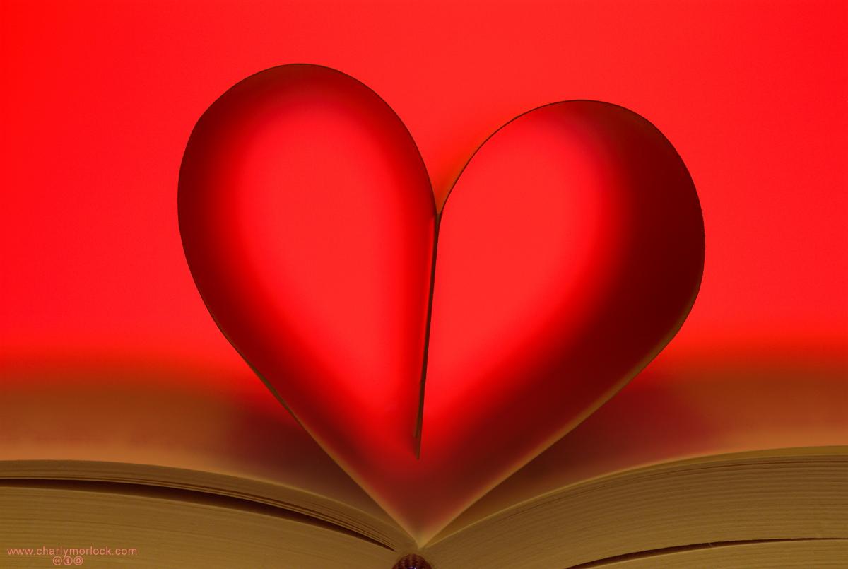 El mejor regalo un libro precios especiales libros jose - El mejor libro de feng shui ...