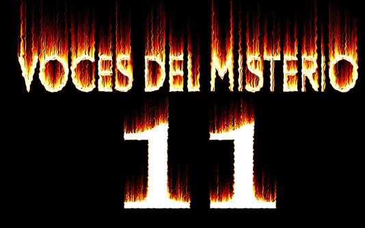 VDM 11 5