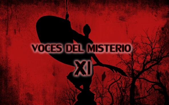 VDM XI 3